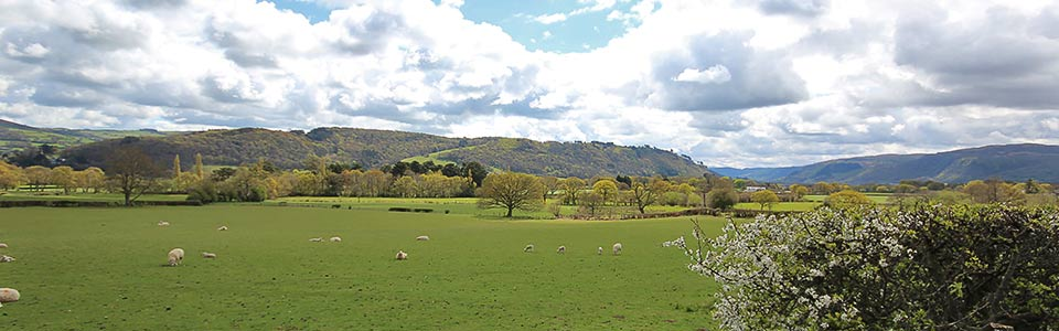 View from Wern Farm Caravan Park and Holiday Cottages near Conwy